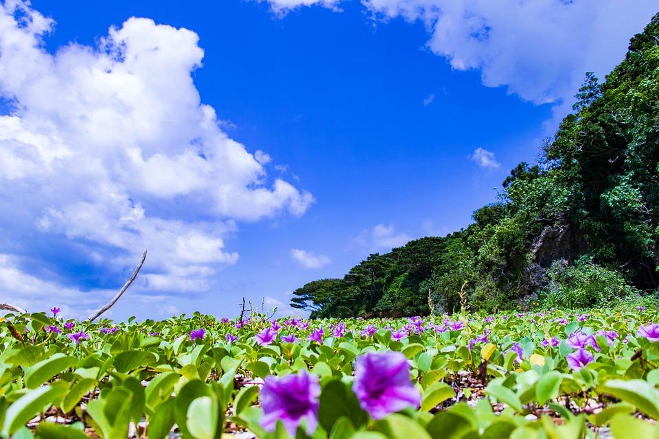 沖縄のグランピングおすすめポイントは「離島」